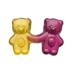 Bear Twins